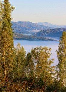 В долине реки туман