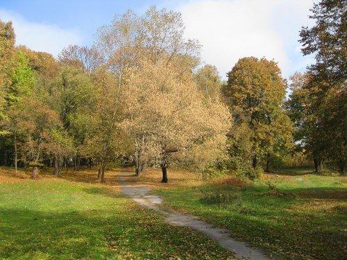 Октябрь в парке