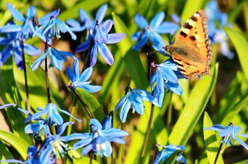 Встреча весны и лета
