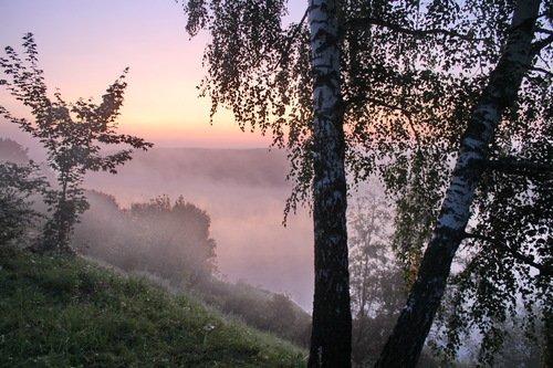 туманное утро 1 сентября