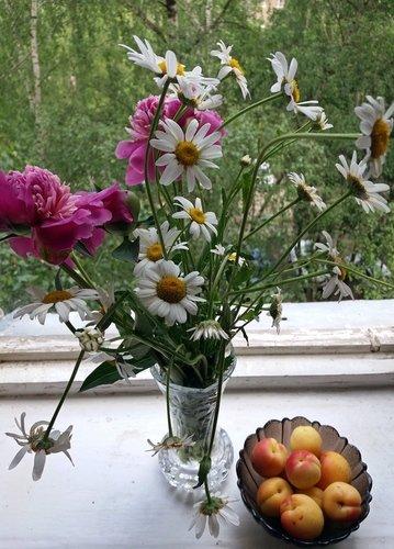 Цветы и абрикосы