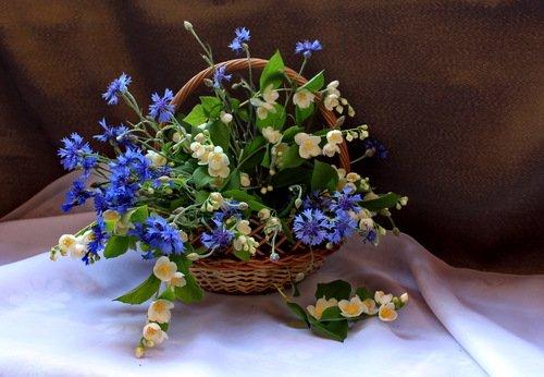букет цветов в корзиночке