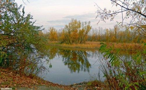 Осень и тишина
