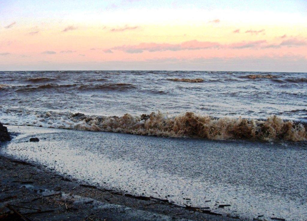 020. У моря (4).jpg