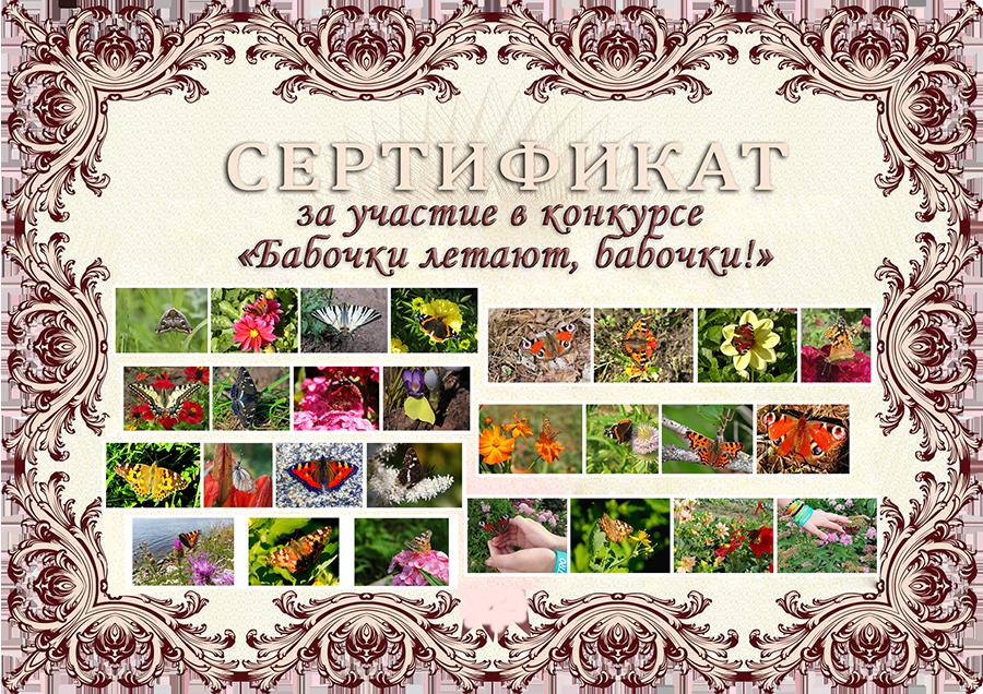 Результаты конкурса «Бабочки летают, бабочки!»