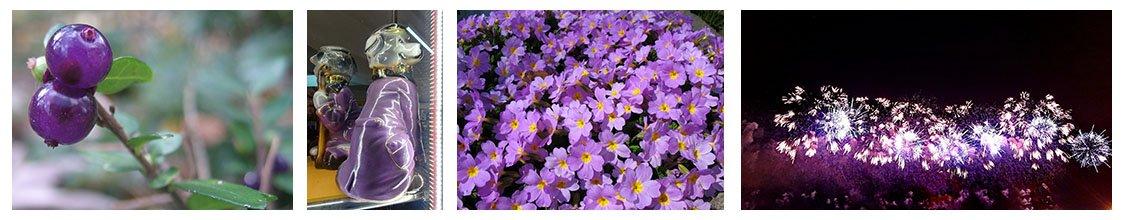 Конкурс «Фиолет». Приём заявок