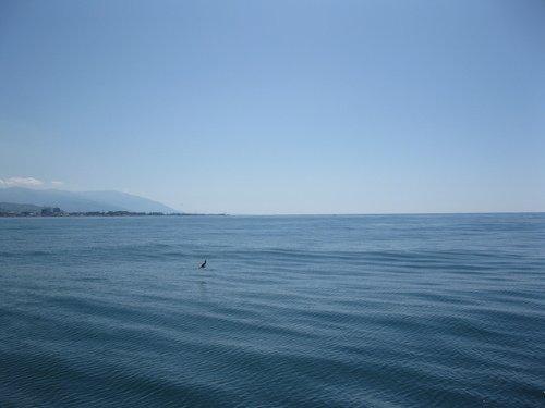 Море, море...