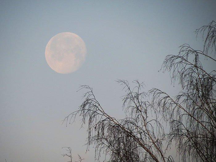 Луна утром 02.12.2020г.