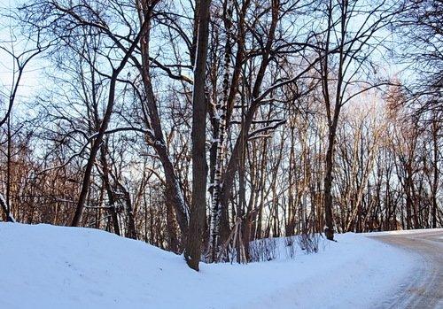 Первый зимний пейзаж с солнцем за всю зиму!