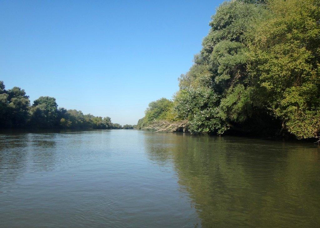 В походе лодочном... август, река Кубань 002 009