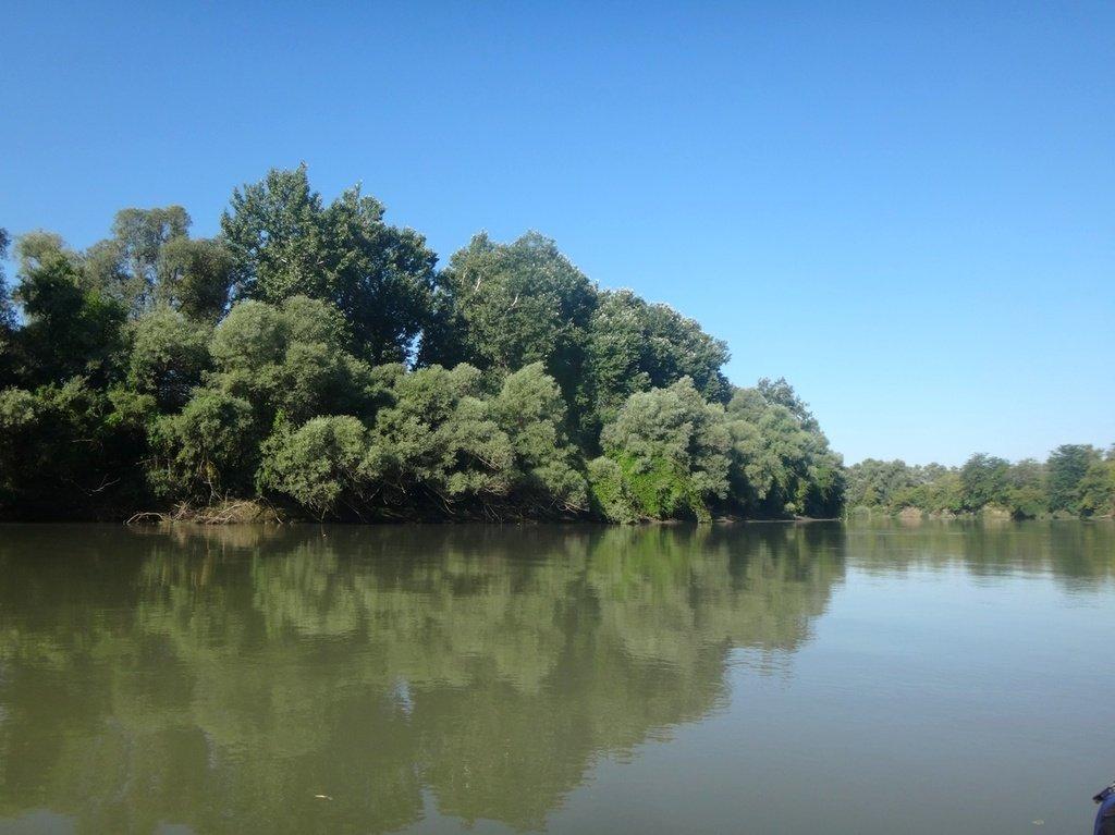 В походе лодочном... август, река Кубань 002 008
