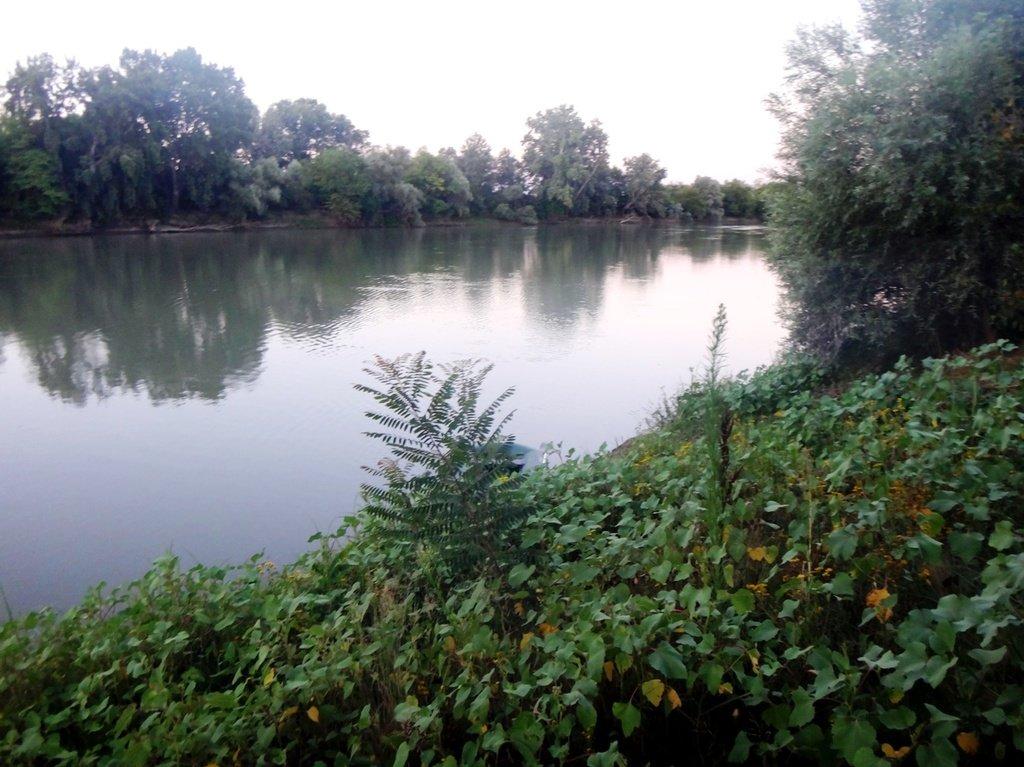 В походе лодочном... август, река Кубань 002 007