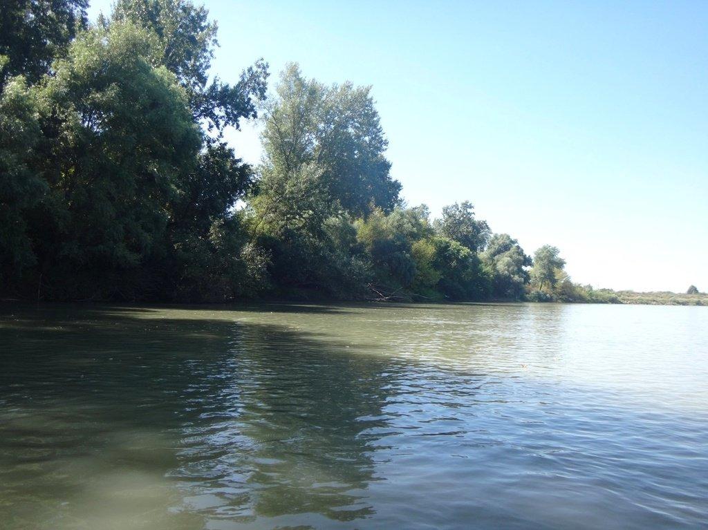 В походе лодочном... август, река Кубань 002 006
