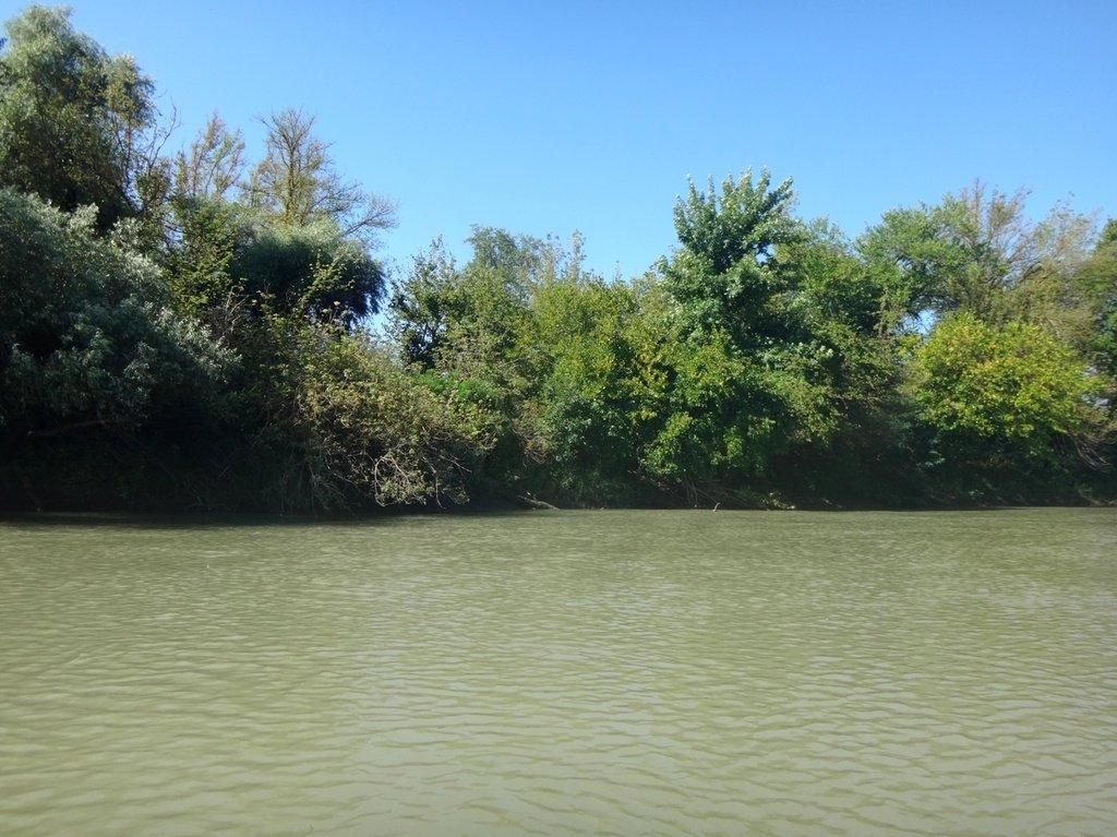 В походе лодочном... август, река Кубань 002 004