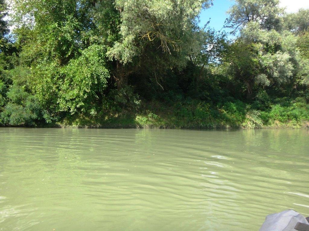 В походе лодочном... август, река Кубань 002 003