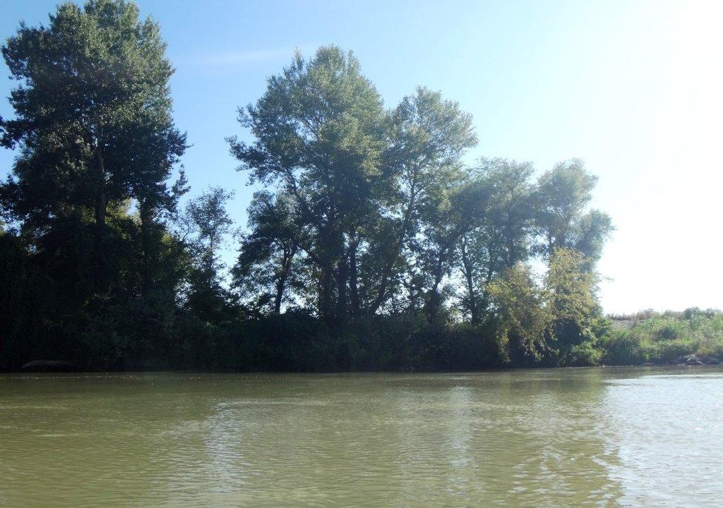 В походе лодочном... август, река Кубань 002 002