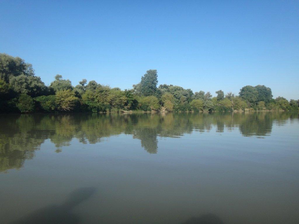 В походе лодочном... август, река Кубань 003 010
