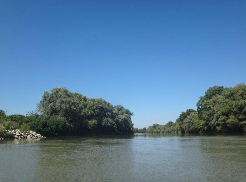 В походе лодочном... август, река Кубань 003 009