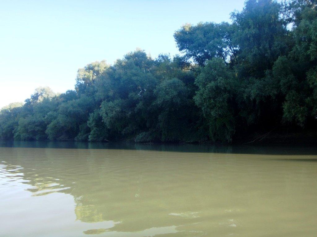 В походе лодочном... август, река Кубань 003 008