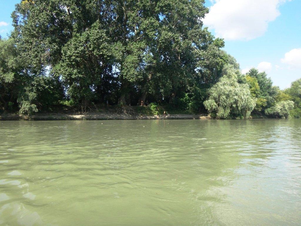 В походе лодочном... август, река Кубань 003 001