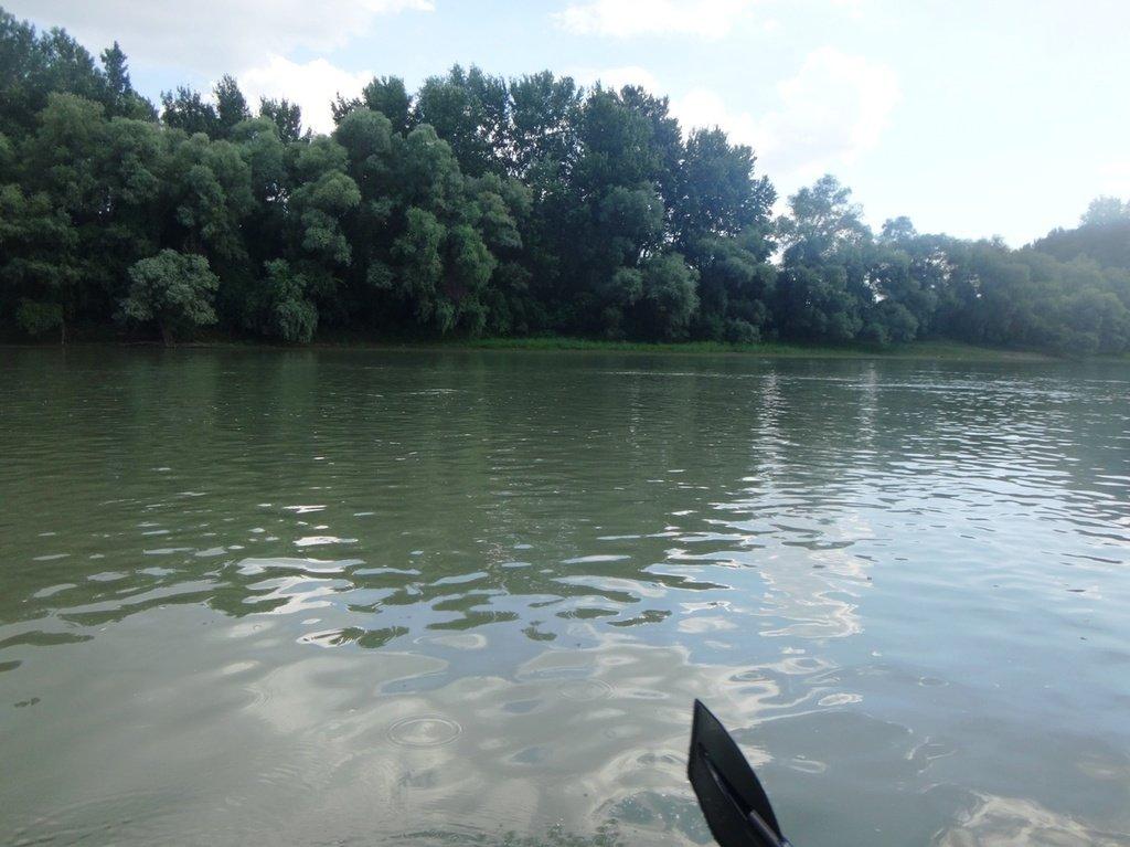 В походе лодочном... август, река Кубань 005 004