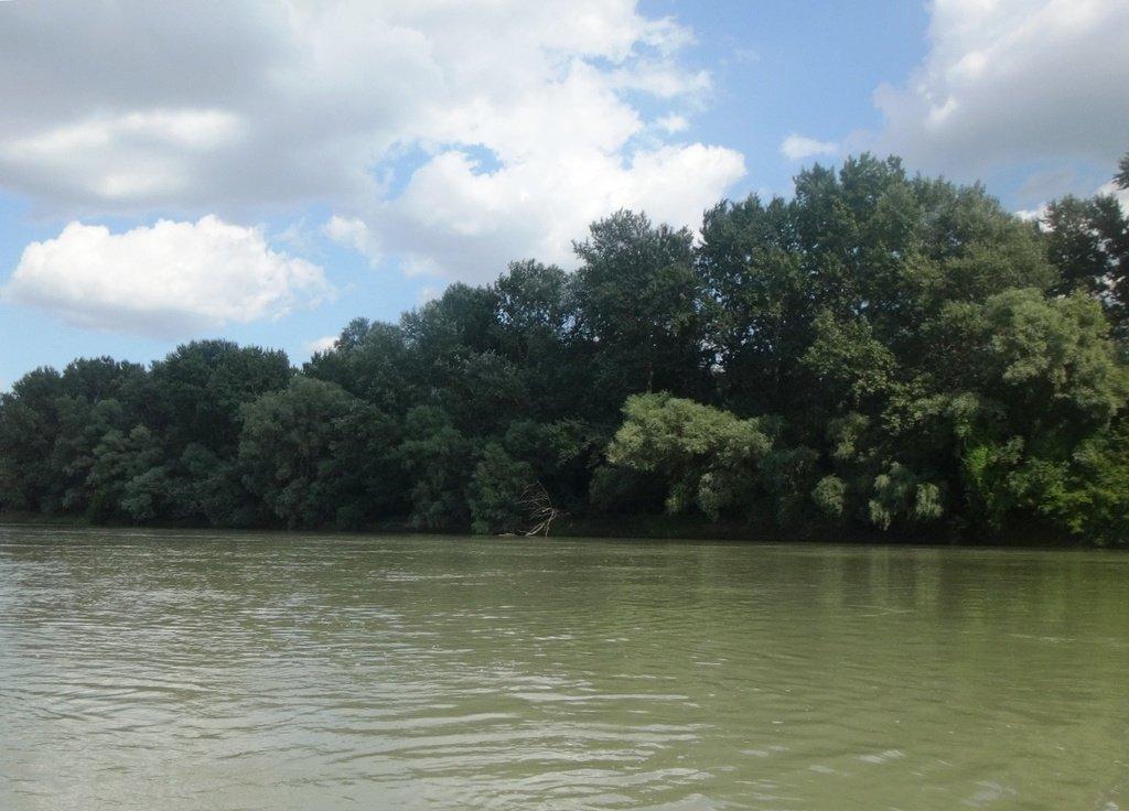 В походе лодочном... август, река Кубань 005 006