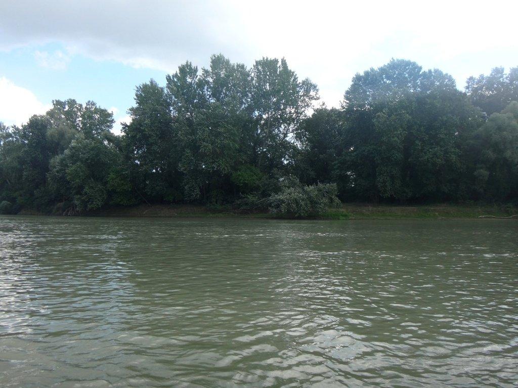 В походе лодочном... август, река Кубань 005 002