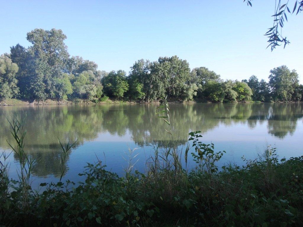 В походе лодочном... август, река Кубань 006 003