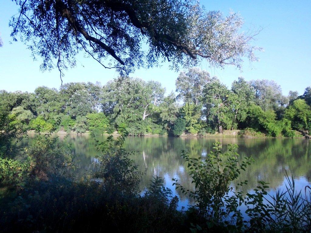 В походе лодочном... август, река Кубань 006 004