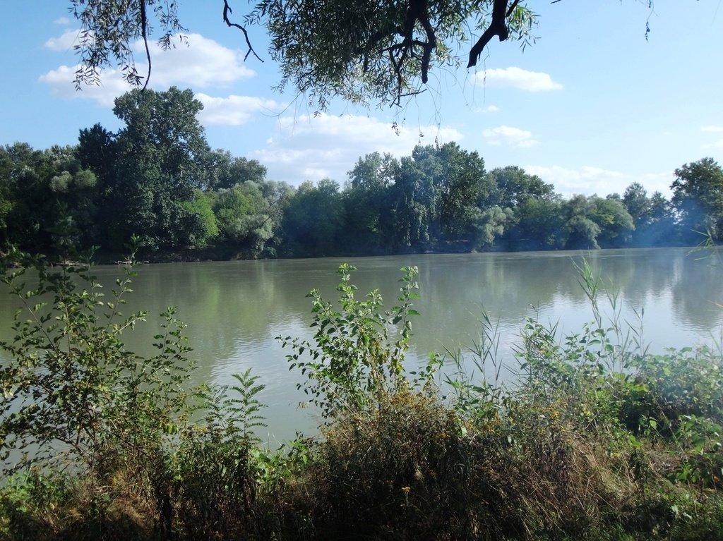 В походе лодочном... август, река Кубань 006 002