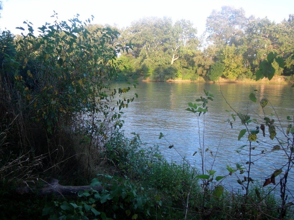 В походе лодочном... август, река Кубань 006 006
