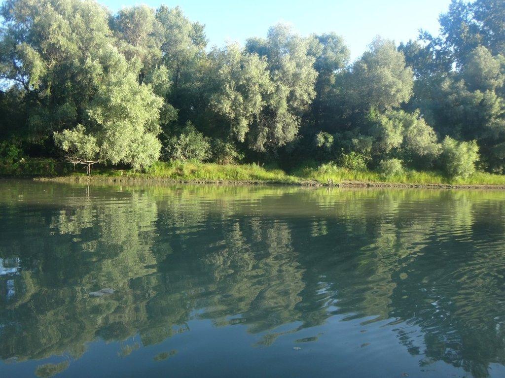 В походе лодочном... август, река Кубань 007 010