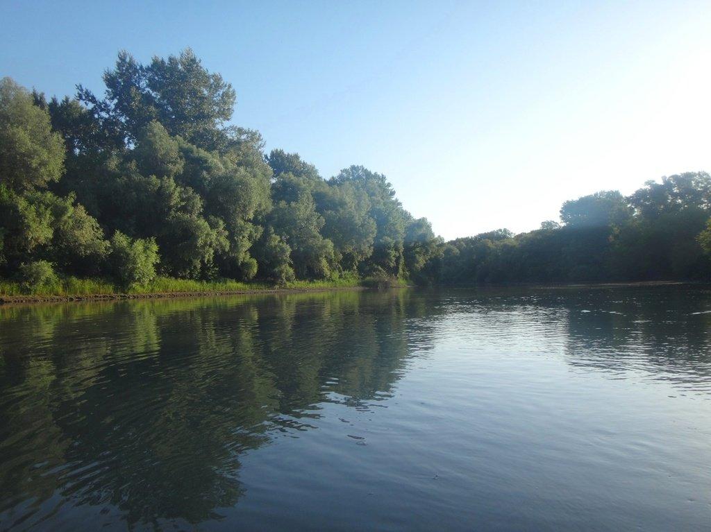 В походе лодочном... август, река Кубань 007 009
