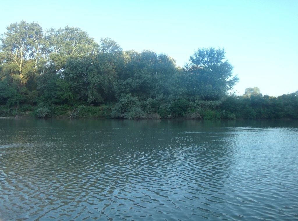 В походе лодочном... август, река Кубань 007 004