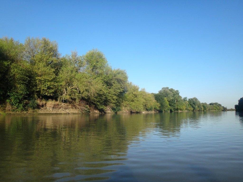 В походе лодочном... август, река Кубань 008 001
