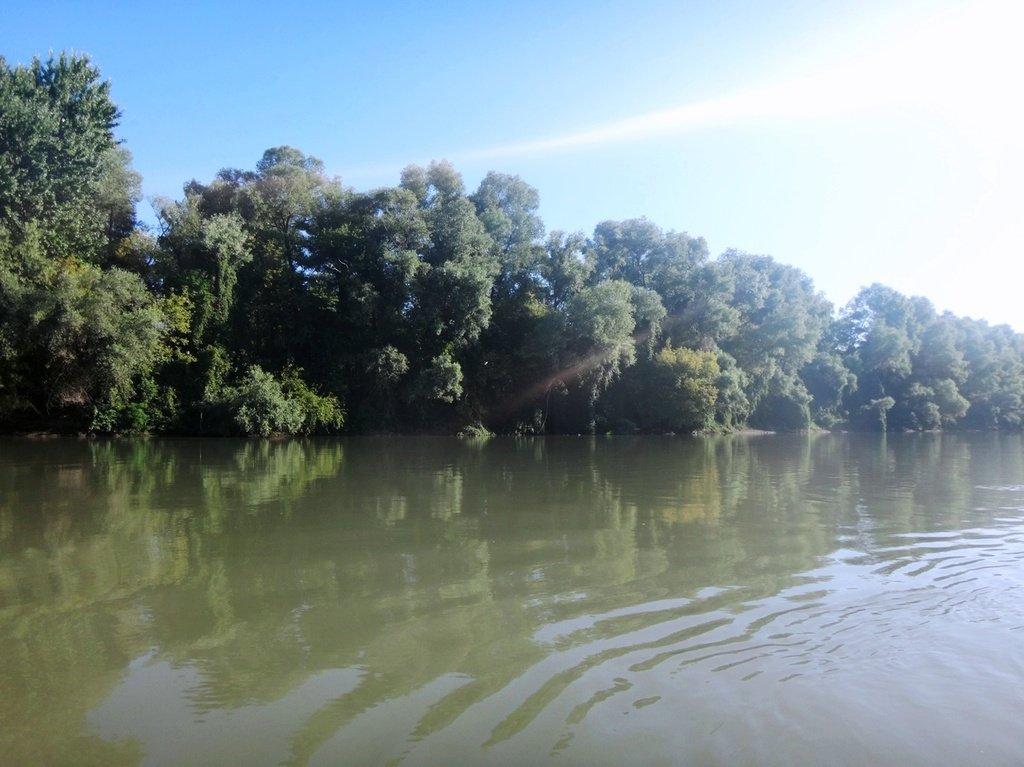 В походе лодочном... август, река Кубань 008 007