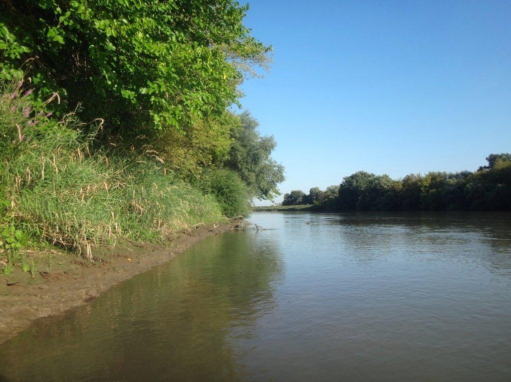 В походе лодочном... август, река Кубань 008 002