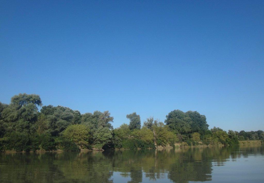 В походе лодочном... август, река Кубань 008 009