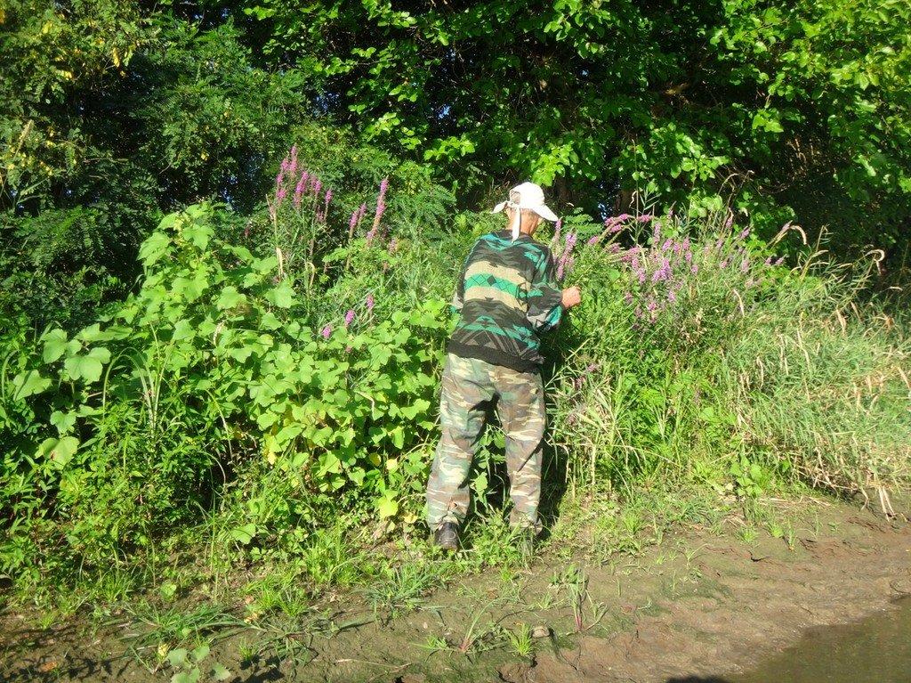 В походе лодочном... август, река Кубань 008 003