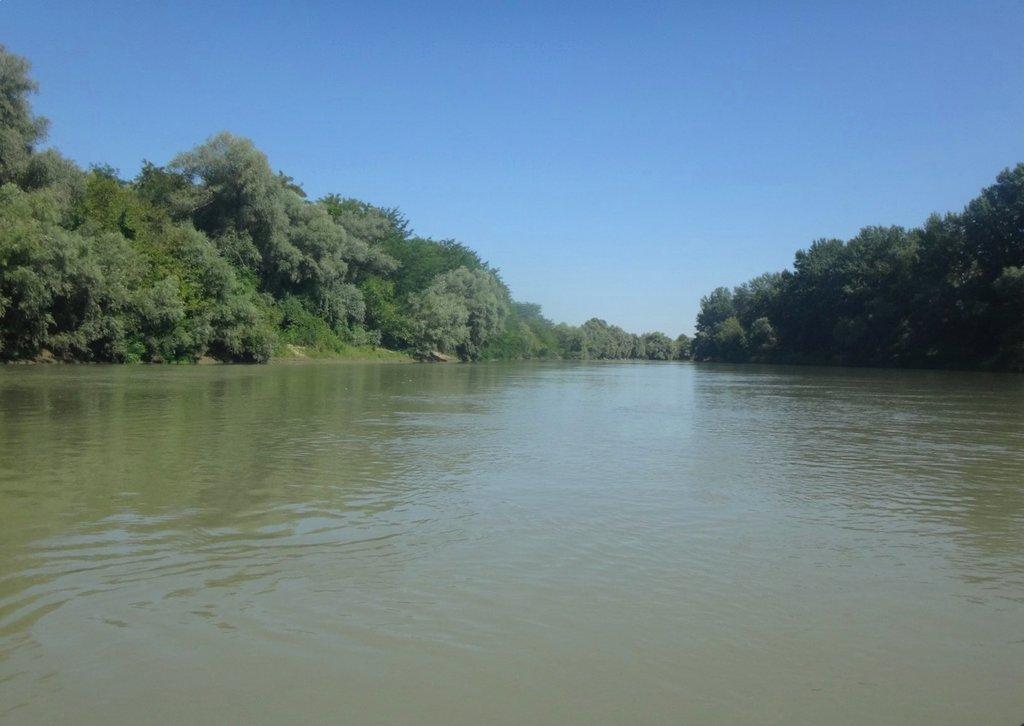 В походе лодочном... август, река Кубань 011 008