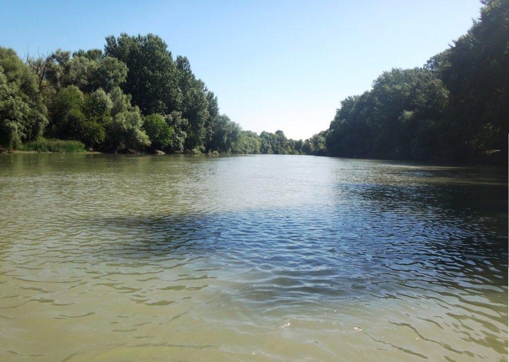 В походе лодочном... август, река Кубань 011 004