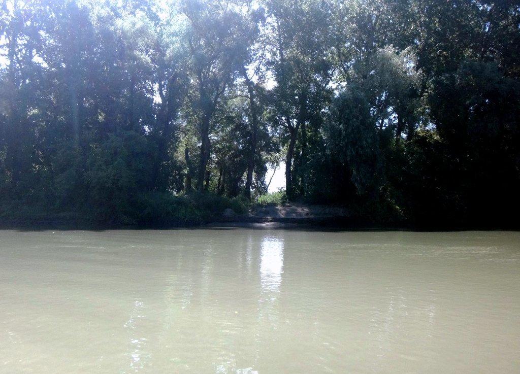 В походе лодочном... август, река Кубань 011 003