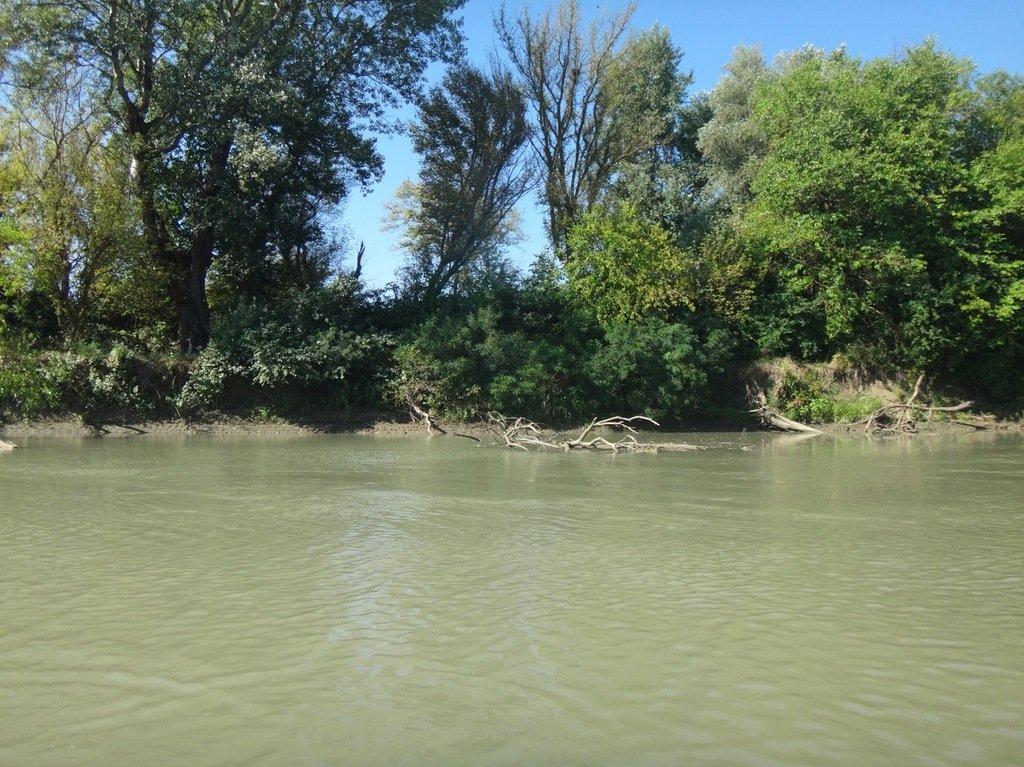 В походе лодочном... август, река Кубань 011 001