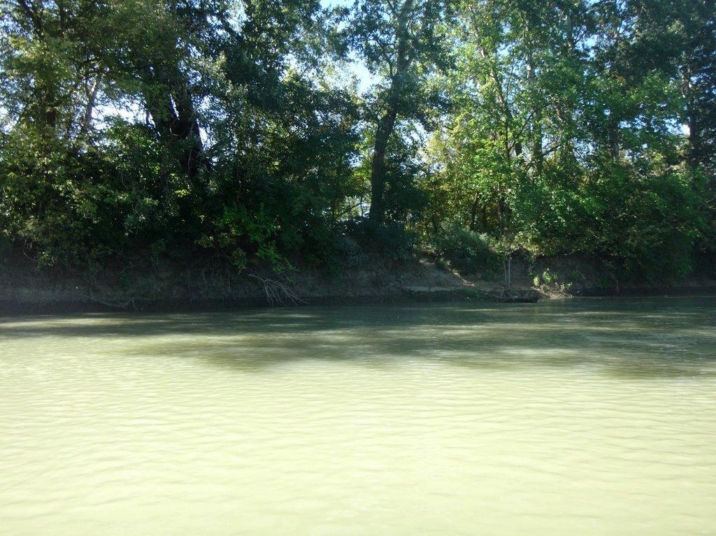 В походе лодочном... август, река Кубань 011 005