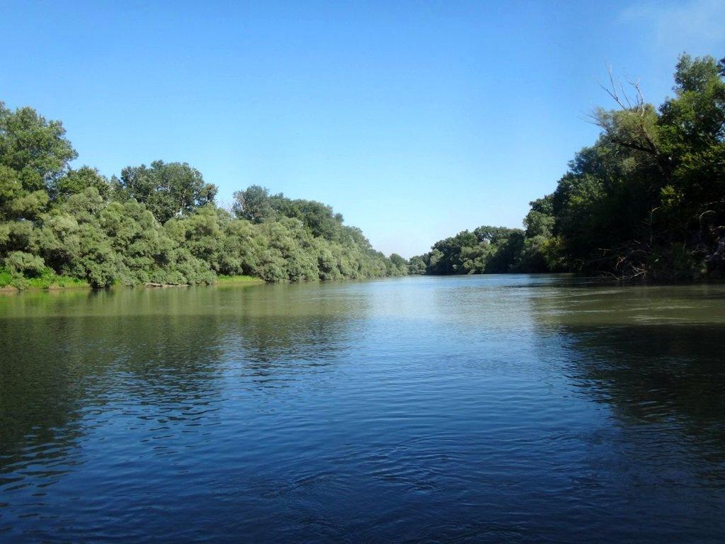 В походе лодочном... август, река Кубань 017 002