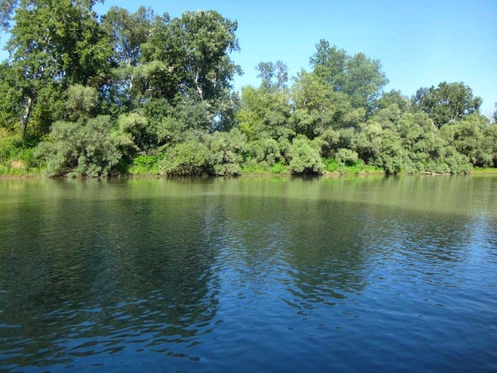 В походе лодочном... август, река Кубань 017 001