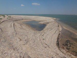Август 2020, у пролива..., море Азовское.DSC06625.JPG