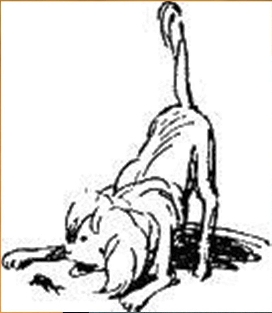 Иллюстрация В. Н. Горяева к пр-ю М.Твена Приключения Тома Сойера (14).