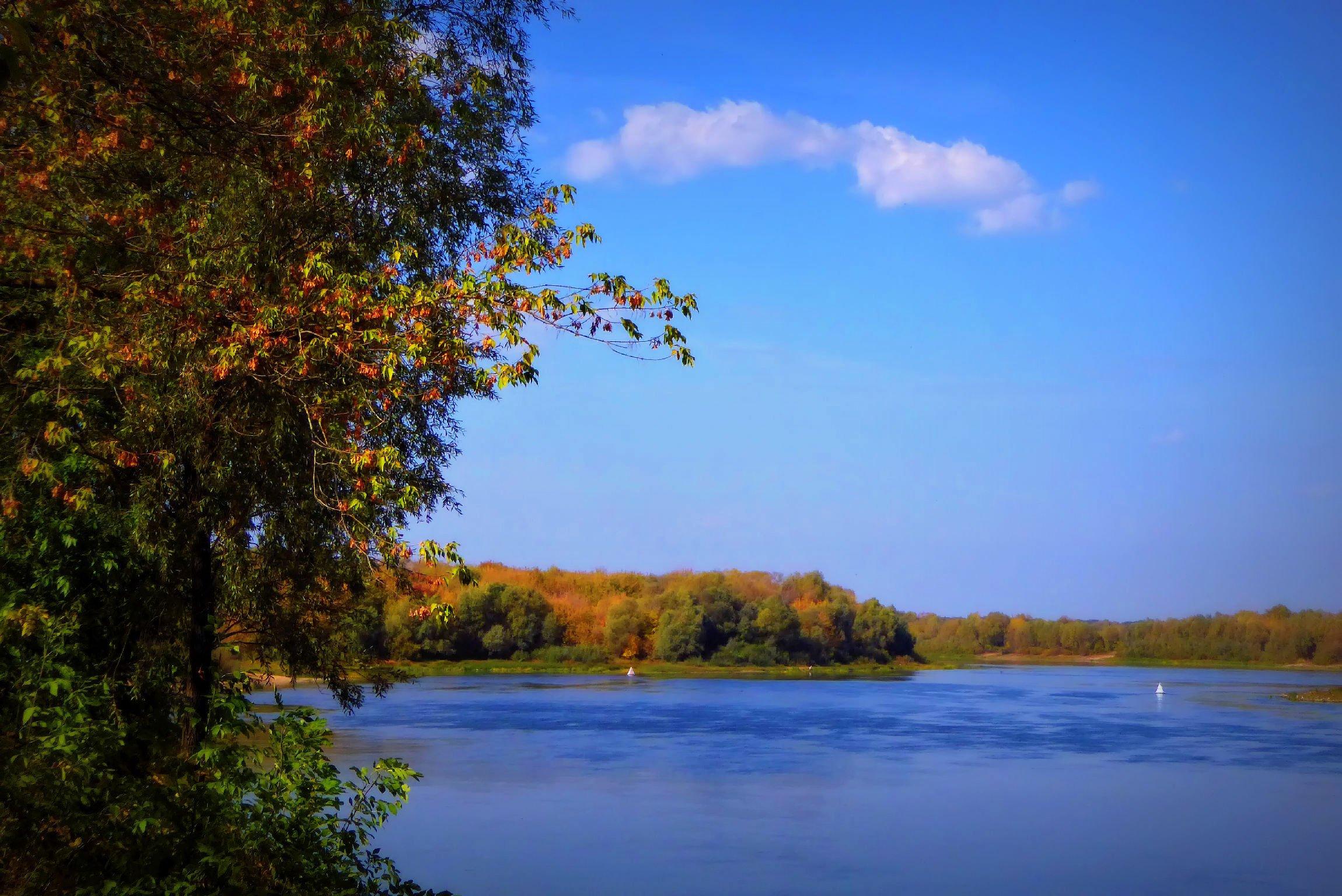 Картинки реки ока рязань
