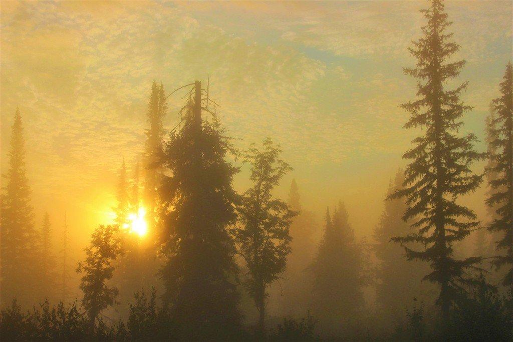 Восход в туманном мареве